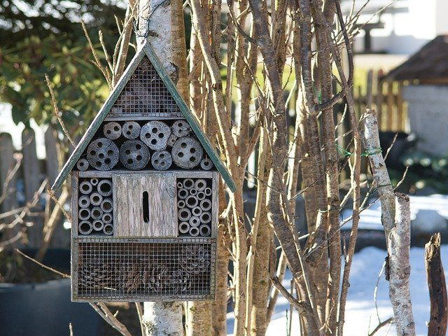 insect hotel, bees, wasps