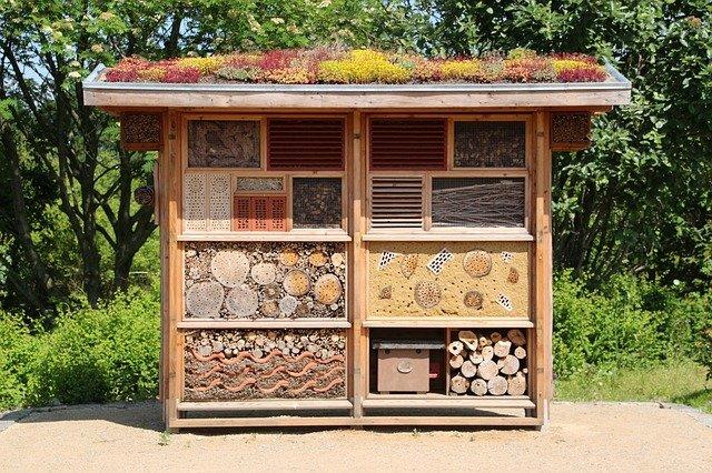 maison d'insecte, mise en veille prolongée, bois
